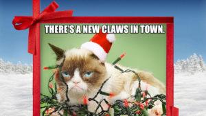New Claws (Grumpy Cat)