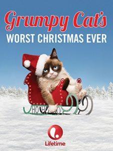 S1 Bonus Grumpy Cat